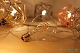 Bóng đèn trang trí Edison E27 G80